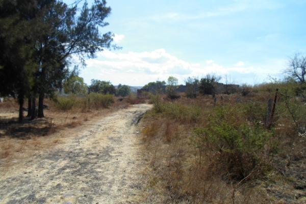 Foto de terreno habitacional en venta en s/n , san lorenzo itzicuaro, morelia, michoacán de ocampo, 5320277 No. 03
