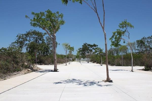 Foto de terreno habitacional en venta en s/n , temozon norte, mérida, yucatán, 13851461 No. 04