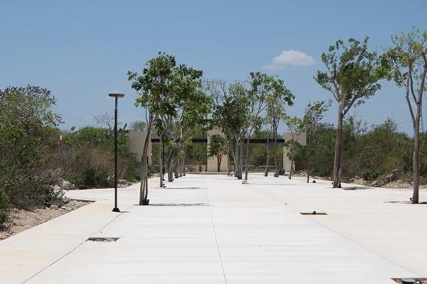 Foto de terreno habitacional en venta en s/n , temozon norte, mérida, yucatán, 13851461 No. 06