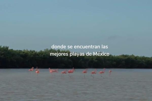 Foto de departamento en venta en s/n , temozon norte, mérida, yucatán, 9985749 No. 06
