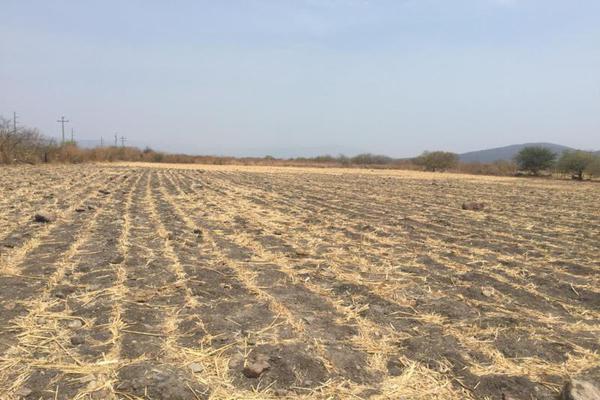 Foto de terreno comercial en venta en sn , tetecala, tetecala, morelos, 0 No. 01