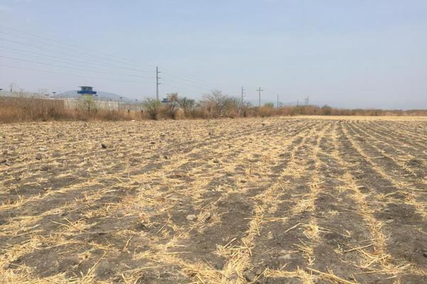 Foto de terreno comercial en venta en sn , tetecala, tetecala, morelos, 0 No. 02