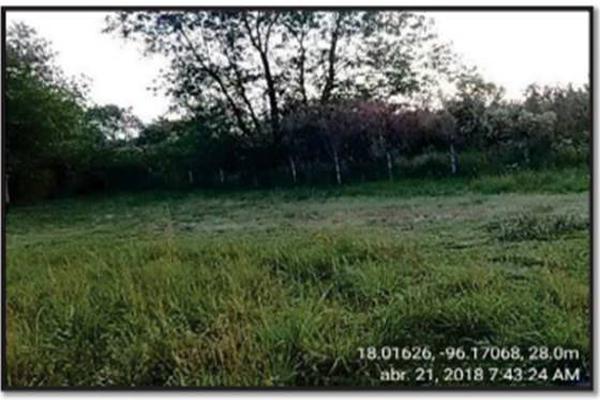 Foto de terreno industrial en venta en s/n , tuxtepec centro, san juan bautista tuxtepec, oaxaca, 7523034 No. 06