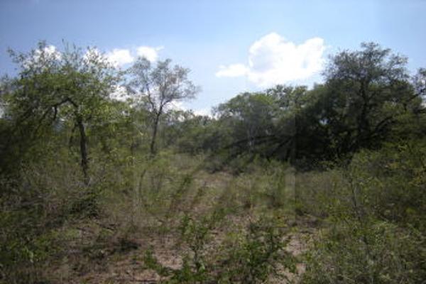 Foto de terreno comercial en venta en s/n , villas de la alianza, monterrey, nuevo león, 0 No. 03