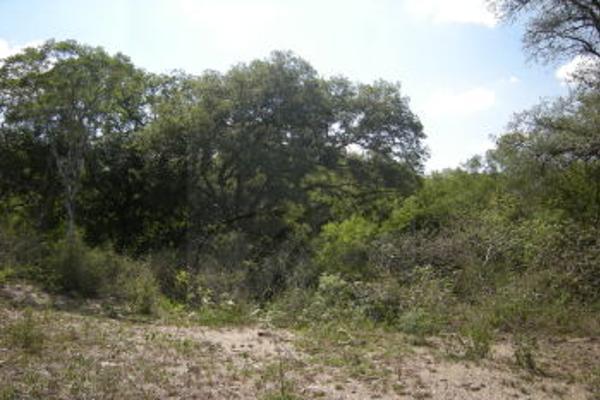 Foto de terreno comercial en venta en s/n , villas de la alianza, monterrey, nuevo león, 0 No. 11