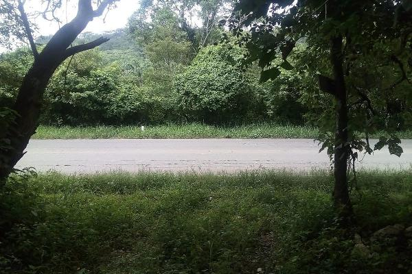 Foto de terreno habitacional en venta en s/n , viva cárdenas, san fernando, chiapas, 5667361 No. 01