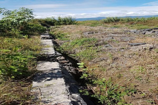 Foto de terreno habitacional en venta en sobre carretera km68 , atlatlahucan, atlatlahucan, morelos, 10025359 No. 04