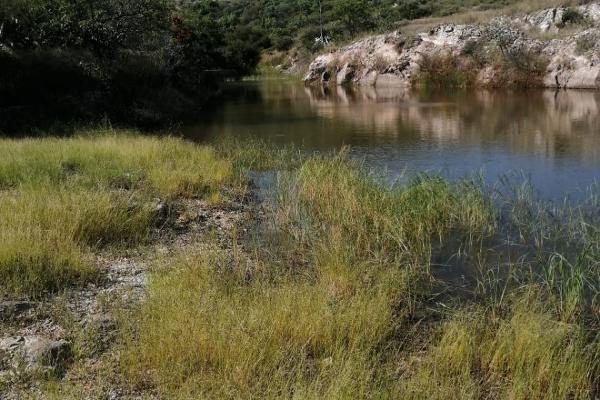 Foto de terreno habitacional en venta en  , solano, guanajuato, guanajuato, 8849537 No. 03