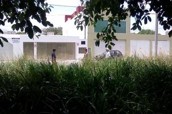 Foto de terreno habitacional en venta en  , solidaridad, solidaridad, quintana roo, 8086762 No. 04