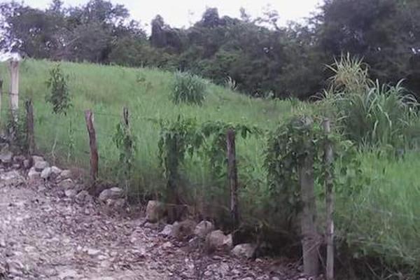 Foto de casa en venta en  , tibolon, sotuta, yucatán, 7975043 No. 03