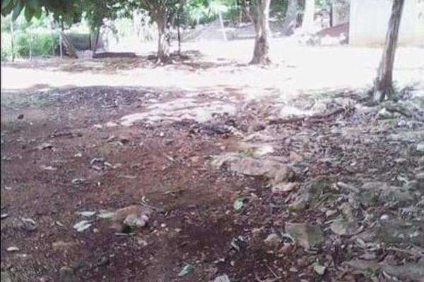 Foto de casa en venta en  , tibolon, sotuta, yucatán, 7975043 No. 18
