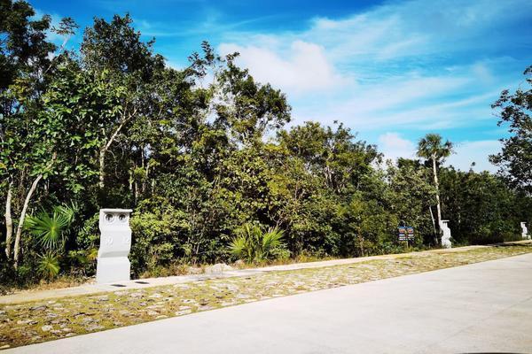 Foto de terreno habitacional en venta en  , supermanzana 25, benito juárez, quintana roo, 19423975 No. 10