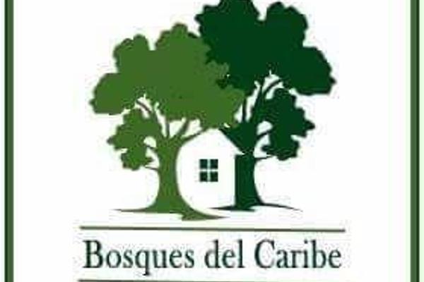 Foto de terreno habitacional en venta en  , supermanzana 9, benito juárez, quintana roo, 7860367 No. 01