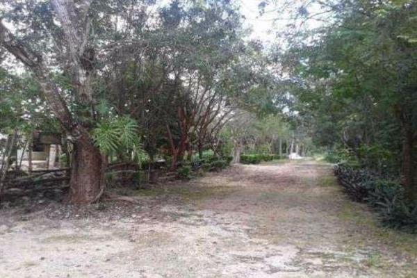 Foto de terreno habitacional en venta en  , supermanzana 52, benito juárez, quintana roo, 7860367 No. 12