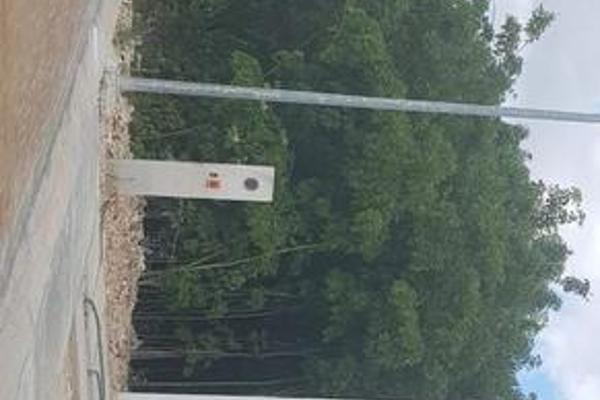 Foto de terreno habitacional en venta en  , supermanzana 52, benito juárez, quintana roo, 8075260 No. 02