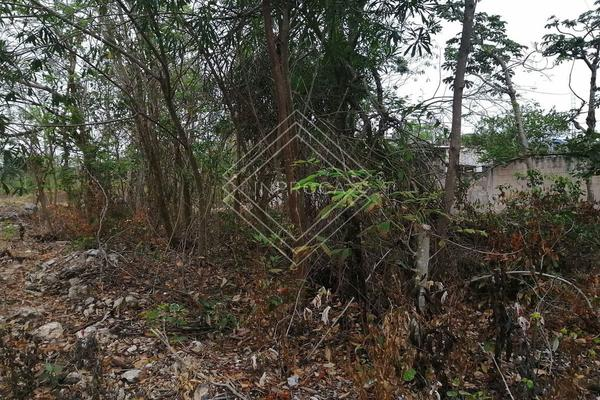 Foto de terreno habitacional en venta en  , supermanzana 529, benito juárez, quintana roo, 20168807 No. 04