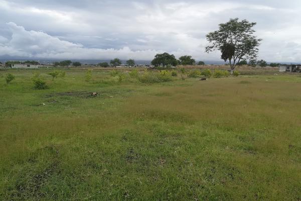 Foto de terreno habitacional en venta en tacámbaro , tierra larga, cuautla, morelos, 5370970 No. 02