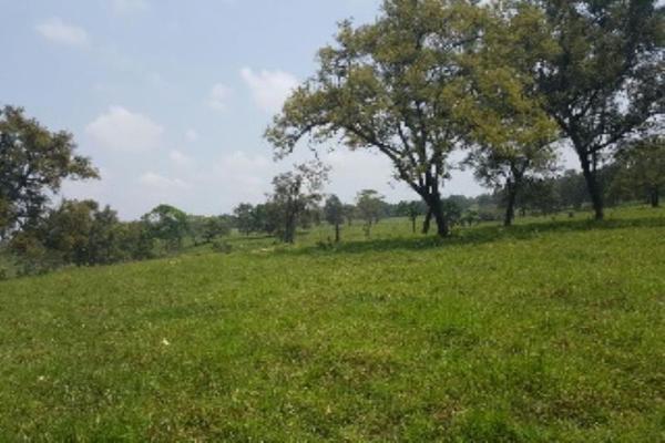 Foto de terreno comercial en venta en tacotalpa 1, tacotalpa, tacotalpa, tabasco, 5980125 No. 01