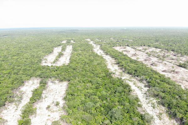 Foto de terreno habitacional en venta en  , tamanché, mérida, yucatán, 9229075 No. 13