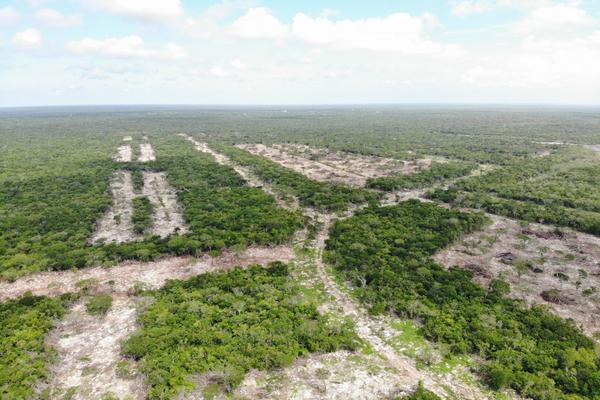 Foto de terreno habitacional en venta en  , tamanché, mérida, yucatán, 9229075 No. 14