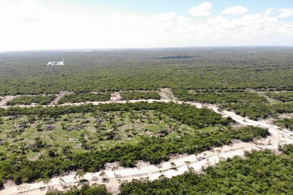 Foto de terreno habitacional en venta en  , tamanché, mérida, yucatán, 9229075 No. 15