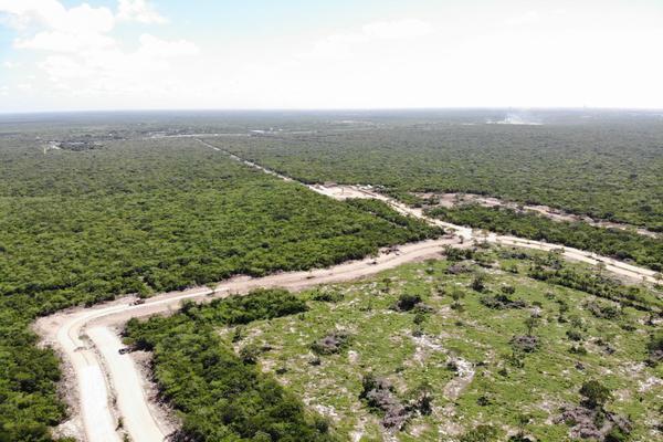 Foto de terreno habitacional en venta en  , tamanché, mérida, yucatán, 9229075 No. 16
