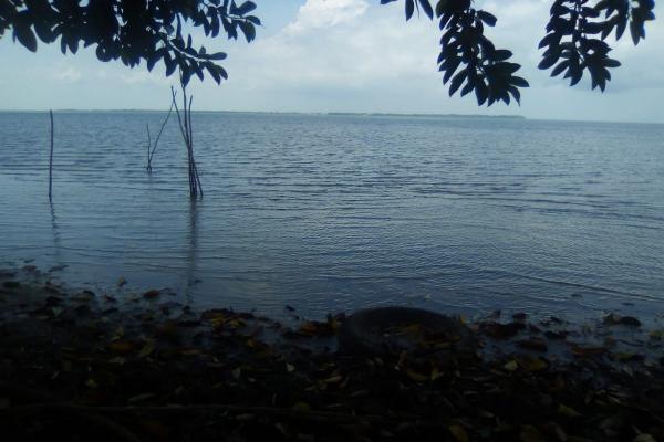 Foto de rancho en venta en  , tamiahua, tamiahua, veracruz de ignacio de la llave, 8856763 No. 02