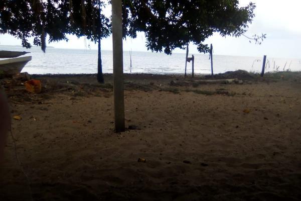 Foto de rancho en venta en  , tamiahua, tamiahua, veracruz de ignacio de la llave, 8856763 No. 03