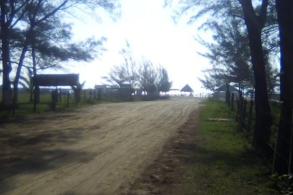 Foto de rancho en venta en  , tamiahua, tamiahua, veracruz de ignacio de la llave, 8856763 No. 06