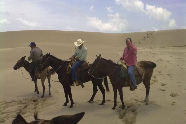 Foto de rancho en venta en  , tamiahua, tamiahua, veracruz de ignacio de la llave, 8856763 No. 10