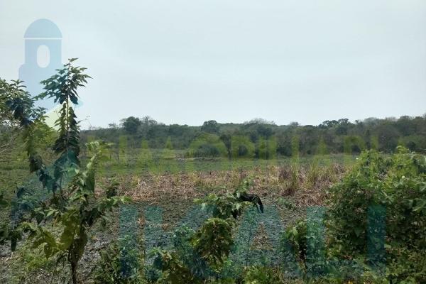 Foto de terreno habitacional en venta en  , tampache, tamiahua, veracruz de ignacio de la llave, 7244526 No. 04
