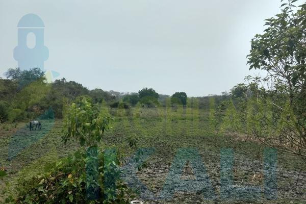 Foto de terreno habitacional en venta en  , tampache, tamiahua, veracruz de ignacio de la llave, 7244526 No. 05