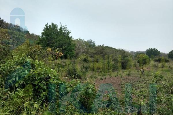 Foto de terreno habitacional en venta en  , tampache, tamiahua, veracruz de ignacio de la llave, 7244526 No. 06