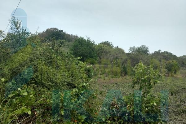 Foto de terreno habitacional en venta en  , tampache, tamiahua, veracruz de ignacio de la llave, 7244526 No. 07