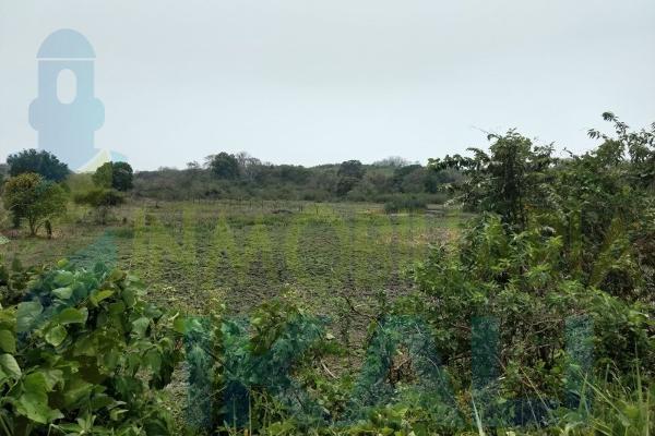 Foto de terreno habitacional en venta en  , tampache, tamiahua, veracruz de ignacio de la llave, 7244526 No. 08
