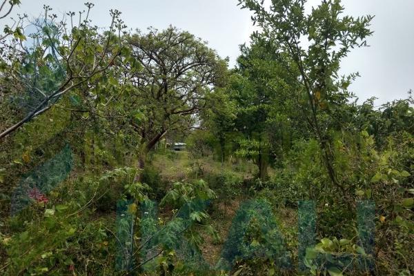 Foto de terreno habitacional en venta en  , tampache, tamiahua, veracruz de ignacio de la llave, 7244526 No. 09
