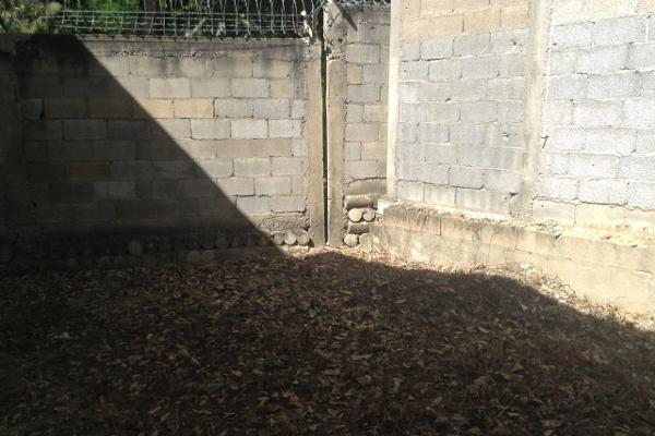 Foto de casa en venta en  , tancol 33, tampico, tamaulipas, 3428225 No. 05