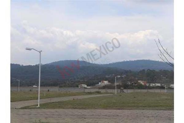 Foto de terreno habitacional en venta en  , tecali de herrera, tecali de herrera, puebla, 8848410 No. 08