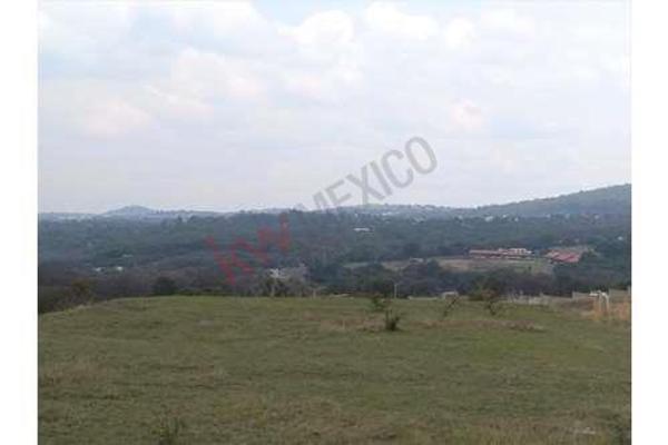 Foto de terreno habitacional en venta en  , tecali de herrera, tecali de herrera, puebla, 8848410 No. 10