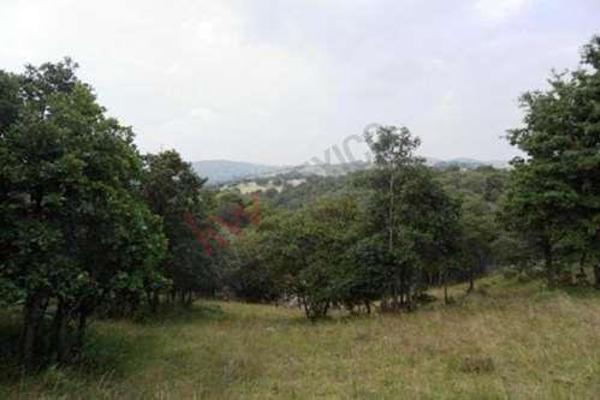 Foto de terreno habitacional en venta en  , tecali de herrera, tecali de herrera, puebla, 8848410 No. 26