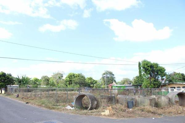 Foto de terreno habitacional en venta en  , tecolutla, tecolutla, veracruz de ignacio de la llave, 8035381 No. 03