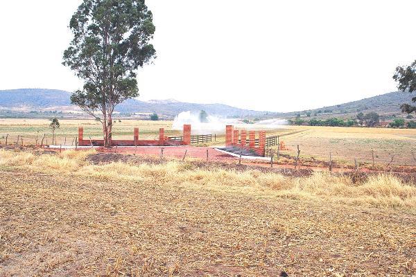 Foto de rancho en venta en  , tecomatlan, zapotlanejo, jalisco, 3054942 No. 05