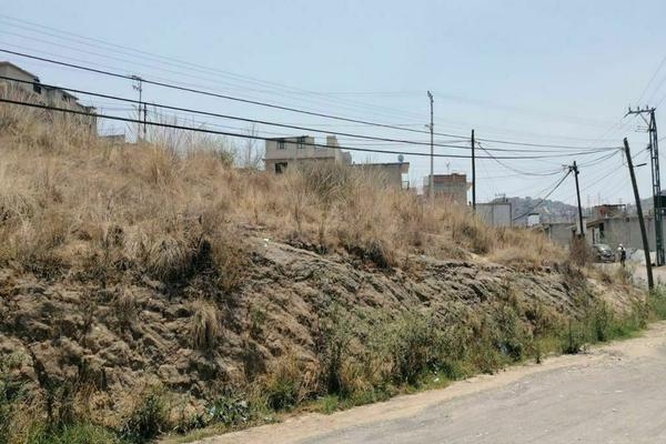 Foto de terreno habitacional en venta en tejocote , san mateo nopala, naucalpan de juárez, méxico, 20512195 No. 03