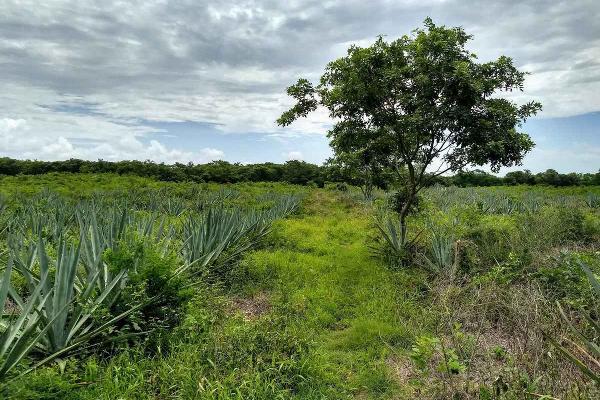 Foto de terreno habitacional en venta en  , tekanto, tekantó, yucatán, 8857654 No. 01