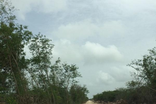 Foto de terreno habitacional en venta en  , tekat, mocochá, yucatán, 14028645 No. 05