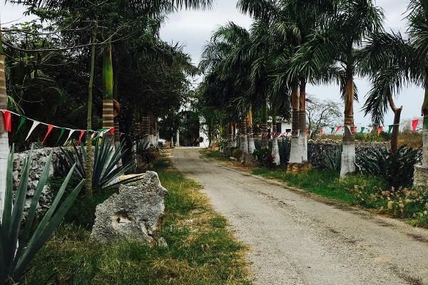 Foto de rancho en venta en telchac , telchac, telchac pueblo, yucatán, 3224349 No. 35