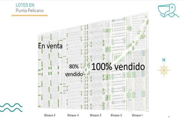 Foto de terreno habitacional en venta en  , telchac puerto, telchac puerto, yucatán, 8091902 No. 05