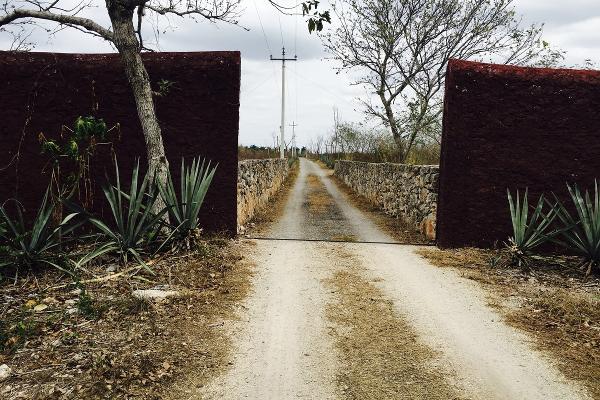 Foto de terreno habitacional en venta en  , telchac, telchac pueblo, yucatán, 3230271 No. 02