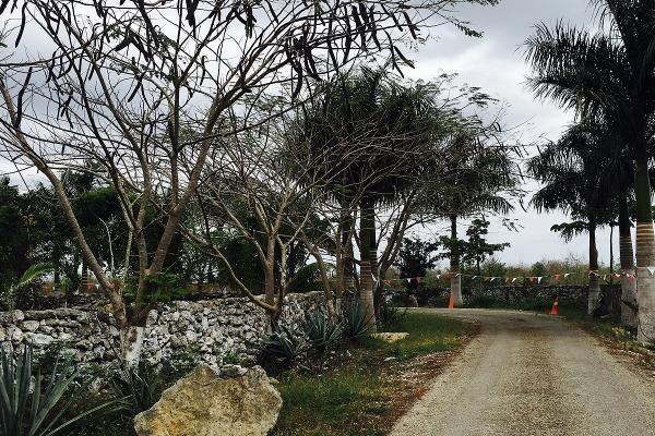 Foto de terreno habitacional en venta en  , telchac, telchac pueblo, yucatán, 3230271 No. 03