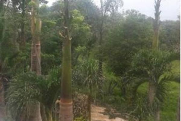 Foto de terreno habitacional en venta en  , telchac, telchac pueblo, yucatán, 7953096 No. 05
